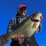 NEW: Record largemouth bass catch confirmed as Florida bass hybrid: http://t.co/VrAHNPH60i by @sceniccityfish http://t.co/GRbCcbjZQ6
