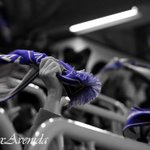 "FOTO - ""Esta noche quebraremos nuestra voz..."" #VamosAvenida http://t.co/Pr99MJJ8T5"