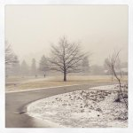 RT @global_user Thats more like it. #winter returns to #Missoula #SiberianExpress #hellgatecanyonwinds http://t.co/3LXKdlBDBO