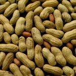 Além do cafezinho mais cedo, comer amendoim com frequência poder fazer bem ao coração http://t.co/nOvNGkEtd5 #G1 http://t.co/hpchtYAqqo