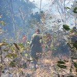 @BomberosES trata de controlar incendio en volcán Chichontepec junto a Fuerza Armada. http://t.co/nURzbh7dRD
