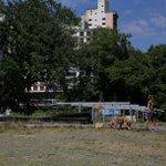 Resistir RT @Estadao: SP: Reintegração do Parque Augusta está prevista para amanhã http://t.co/w7wsXI2oCO http://t.co/WRu7xIyc1L