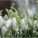 — Сейчас главное, чтобы Март не забыл, что он Весна. http://t.co/V8khyINfJP