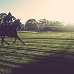 #REDALERT: Another day at the office for #RedCadeaux & best mate Steve Nicholson. What a stunning #Melbourne morning! http://t.co/2kFkxedKXe
