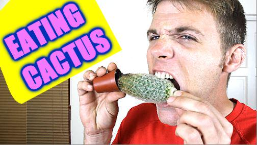 New Video! RT?  http://t.co/laLoZwjq2Q  Eating Cactus - Covering Myself in Yogurt - Vacuum Wake Up Prank | TC #80 http://t.co/BDkSUjYrLt