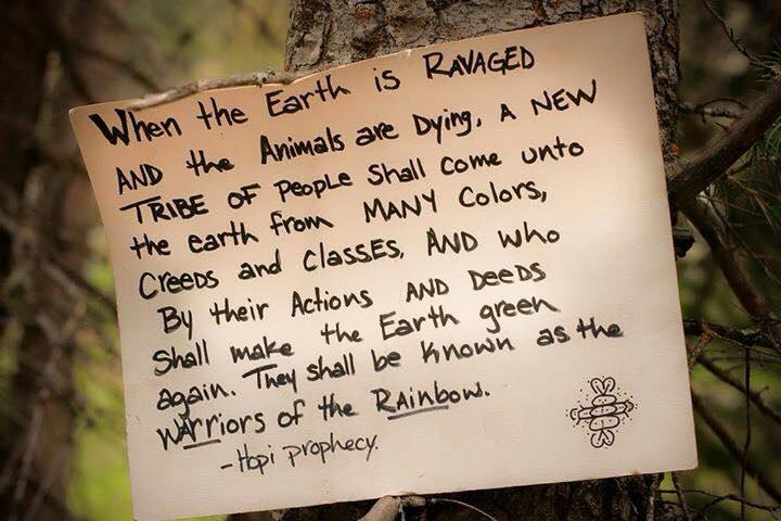 This #WarriorsOfTheRainbow quote is one of the best things I've seen. Like ever! #CapeFire showing hope for humanity! http://t.co/G7uHNDExAk