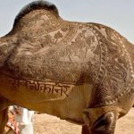 RT @thekiranbedi: (A WOW) @dineshdasa1: An art to appreciate. A camel gets haircut in bikaner.Zoom n c d intricate work.Amazing http://t.co…
