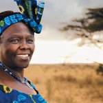 Africa celebrates Africa Environment Day and life of #WangariMaathai (http://t.co/yvv9BSLwot) http://t.co/g8HMQkCr9H
