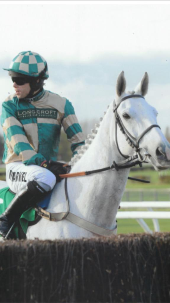 Sad to hear that Nacarat has died. Beautiful horse with a big heart. RIP http://t.co/ADtKc8jeB8