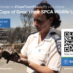 Please also support @SPCAcape, who are saving animals from the #CapeTownFire. Click to pay: https://t.co/TVynRwOJjV http://t.co/VgGYVn5xdp