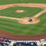 First pitch for both the Brewers and the Panthers for todays game in Maryvale! http://t.co/AHWBkUADtq