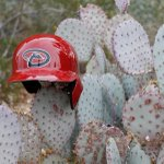 Ready for the Cactus League. ???? #DbacksSpring http://t.co/JXuPhEhnQb