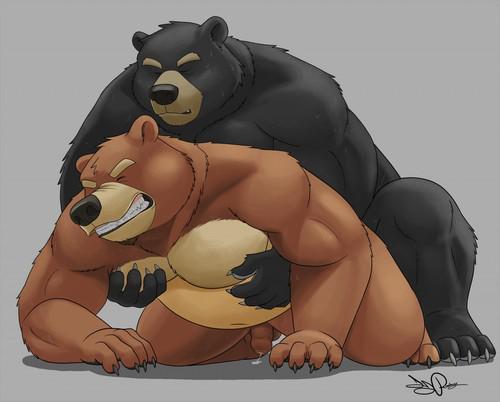 порно фото геев медведей