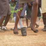 It is amazing how planting trees can bring so many together & create an inspiring adventure! #TBT #Zambia http://t.co/SvLEbldPfy