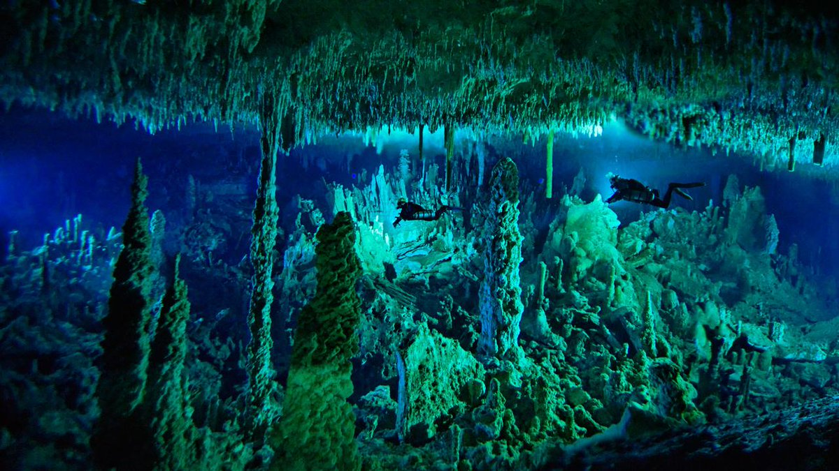 Weave in and out of the blue holes of the Bahamas: