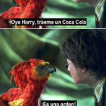 Harry Potter y la orden del fenix xDDDDDDDDDDDDDD http://t.co/Lwfmohh1p8