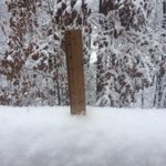 @KevinMyattWx @wattsupbrent Already 5 inches here off of Blacksburg Rd in Botetourt. Roads are a mess. http://t.co/z42L8SHfcE