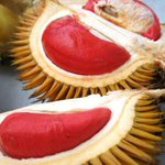 Durian merah dari Kg Pasir Pandak Santubong Sarawak http://t.co/XzrE2HtyFq