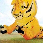 Teruja aksi 'harimau terbang': Festival layang-layang dimeriahkan 419 pelayang http://t.co/LQCup4yWTh http://t.co/urjSlp9ZJa