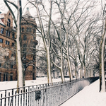 Another snowy day at the Museum! Follow us @amnh on instagram for daily doses of the Museum. http://t.co/1DbzQZ8nro http://t.co/Ad86qYfxSS