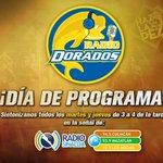 ¡Jueves de #RadioDorados! Sigue nuestro programa de 3 a 4 PM por @RadioSinaloaFM. ¡Tendremos boletos para regalar! http://t.co/VTQ4w4t33A