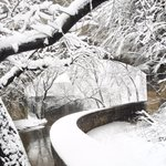 Snowy Rock Creek Park! #snowday9 @wusa9 @RussPtacek http://t.co/h93MI01z9L