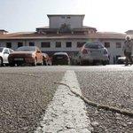 Los expertos advierten de la aparición de plagas de orugas procesionarias en colegios http://t.co/N8buEDXchX http://t.co/9ASFrhVx6e