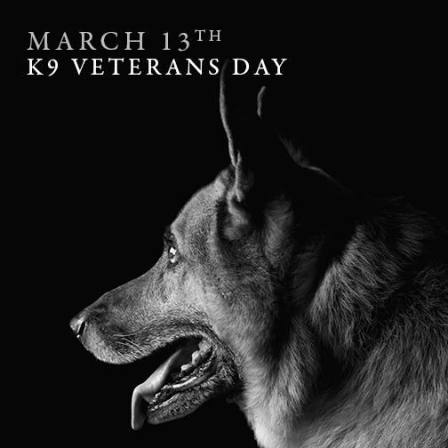 GLOCK honors all military dogs on #K9VeteransDay. Take a moment to thank our 4 legged-friends in the #military. http://t.co/vhuxteHUT5