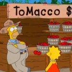 Tutta la scienza dei Simpson. Vi ricordate i Tomacco? Sono stati realizzati per davvero http://t.co/laSWDnEoCx http://t.co/KrSioPYVdU