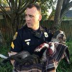 Polícia resgata cachorro baleado e amarrado a trilhos de trem nos EUA http://t.co/lX9gZ9ej5D #G1 http://t.co/7WWoGTrjPt