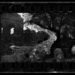 Fotógrafo usa filmes vencidos há 20 anos e vê interação de cenas e fungos http://t.co/u7uNrzumbA #G1 http://t.co/8yPqto6aID