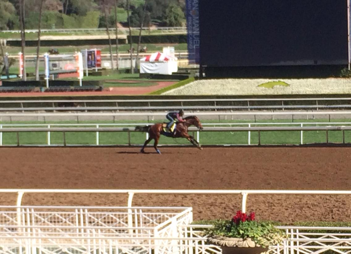 American Pharaoh, wow!  6 fur in 1.10.60 out the Mile in 1.36 & change!  #Rebelbound #DerbyorBust #HorseReligion http://t.co/TECGwg8WdP