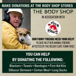 @TheBodyShopSA collecting for animals affected by #CapeFire http://t.co/MhH2sIch6s