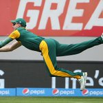 Is this the catch of the tournament?  http://t.co/ZZkNiQfYyv WATCH & tell us if you think it is? #cwc15 #SAvPAK http://t.co/D9TGCtFrLn