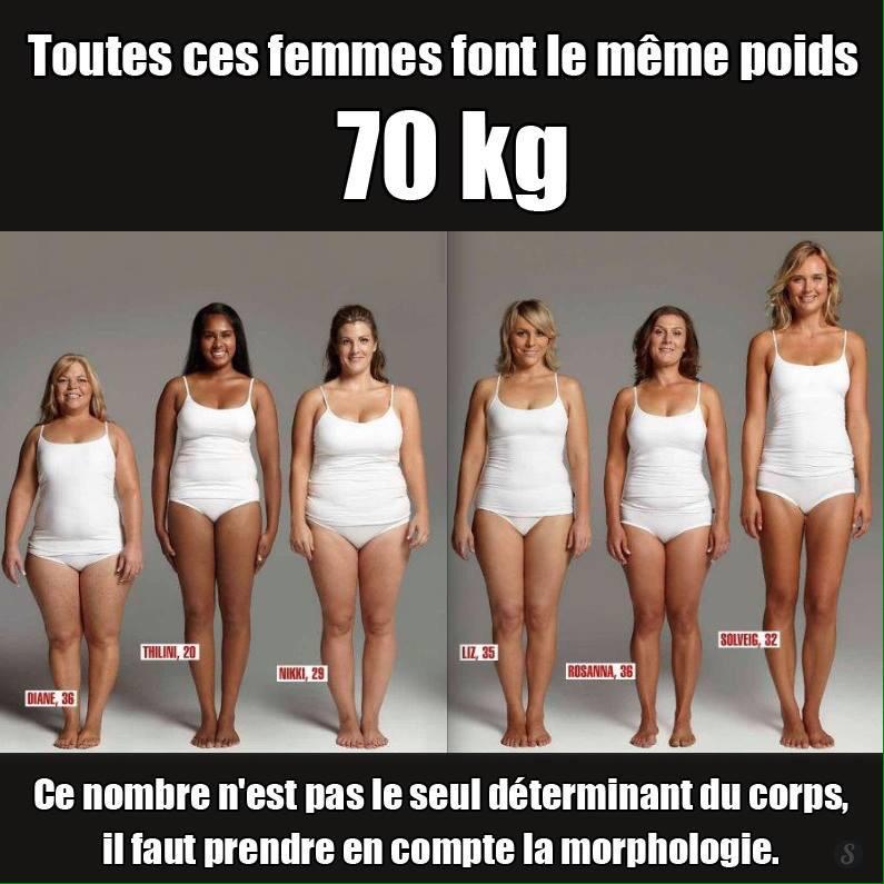 average body fat for women № 79549