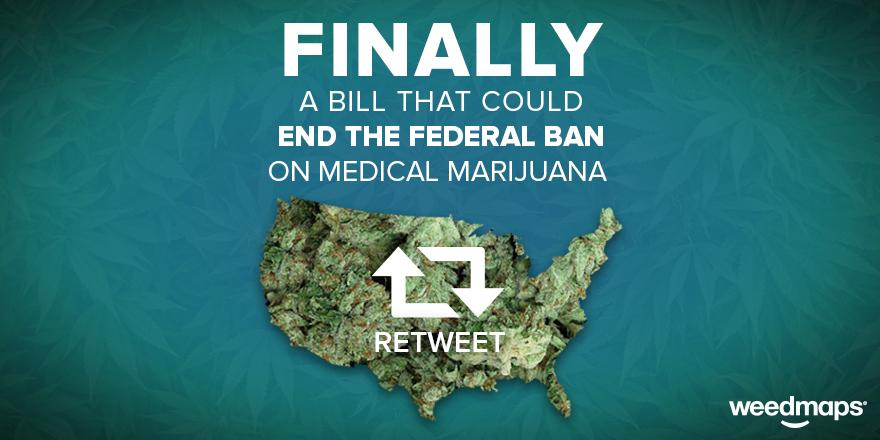 Thank you @CoryBooker, @SenRandPaul & @SenGillibrand! Read more about the bill here: http://t.co/F8UIiAtQZl #legalize http://t.co/bKdsipnQXd