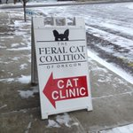 Theres still some white stuff here at our North #PDX spay/neuter clinic! #kgwweather #snowday http://t.co/9UYjtiIbR9