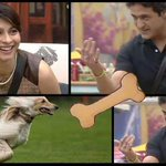 Relationships like this.... #UnfairSalman #BB7 #BB7fail #hateyou http://t.co/v8pYpz983i""
