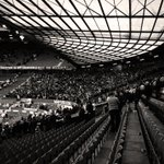 RT @NUFCOfficial: The 3,000-strong travelling army still going strong long after the final whistle #nufc http://t.co/h8fHdAqkXA