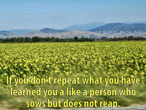 """If you don't repeat what you have learned you are like a person who sows but does not reap."" #startups #education http://t.co/8q6xUtqUMN"