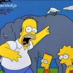 ¡Ése pájaro está matando a mi elefante! https://t.co/ZiFY8ifPWF