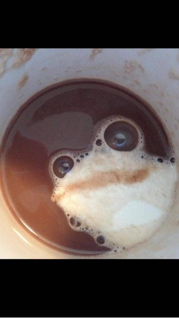 This proves there really is An Almighty Frog.... http://t.co/6di33Jv1Gu