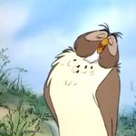 David from im a celeb reminds me of the owl from winnie the pooh soo much http://t.co/uqrzDRJgO0