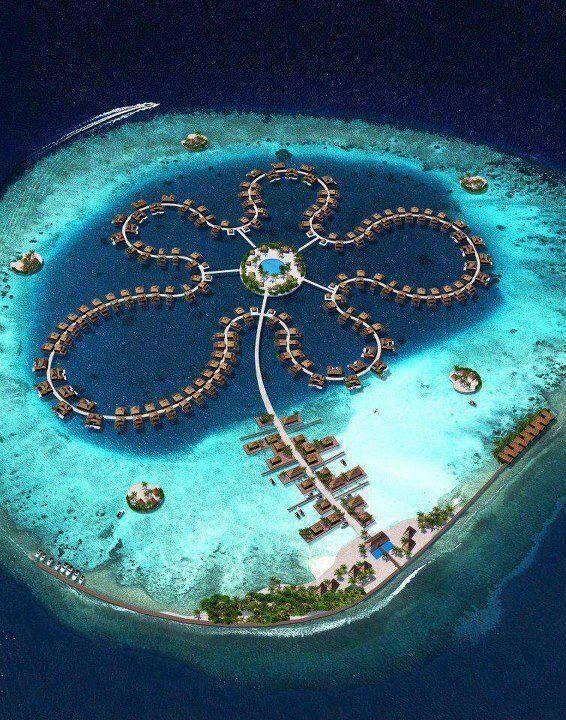 RT @TheHotelegraph: Flower power RT The Ocean Flower Hotel, Maldives @PicturesEarth http://t.co/SUqLfxyhuq
