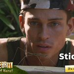 RT @imacelebrity: .@JoeyEssex_ and his new friend Stick. #imacelebrity http://t.co/hGsRDMfnQ9