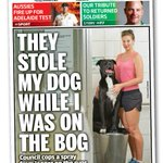 RT @paula_kruger: You are awesome @TheNTNews!  http://t.co/ZnRq4IkGoA Jogs, dogs and bogs.