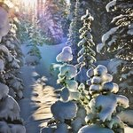 RT @TheHudsonsBayCo: INSPIRATION | Snow & sunshine in Banff. Favourite & RT if you love #Canada! http://t.co/G9o9gqiBtf