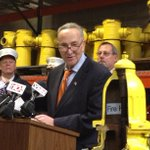 "Before news conference in fire hydrant warehouse, @SenSchumer asks aide: ""Can I say, This is a dogs paradise?"" http://t.co/ztqhdWX7UE"