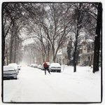 A little part of me really misses this #winterwonderland RT @birdchick: Skiing thru Uptown. #Instagram http://t.co/J6crYFlWWD