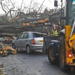 RT @STVNews: A tree struck a car in the Barnton area of Edinburgh this morning #scotstorm http://t.co/drF2RhNDfA http://t.co/wzUfvoP7nl